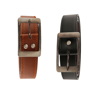 Aleron Formal and casual Belt Combo2