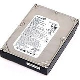 Seagate 250 GB Internal Desktop SATA Hard Disk 250GB with Wrnty