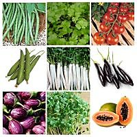 Vegetable Seeds Combo Pack- Cowpea, Coriander, Tomato, Long Brinjal PACK Of 9