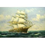 The Sailing Boat Printed Painting