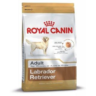 royal canin labrador adult 3 kg buy royal canin labrador adult 3 kg online at best prices. Black Bedroom Furniture Sets. Home Design Ideas