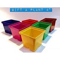 Plant Pot Set Of 4 Pcs (Size 4inch ,Multi Color)