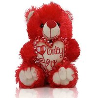 Special Gift For Special Person Soft Heart And Smart Teddy Bear
