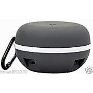 Wireless speaker with FM