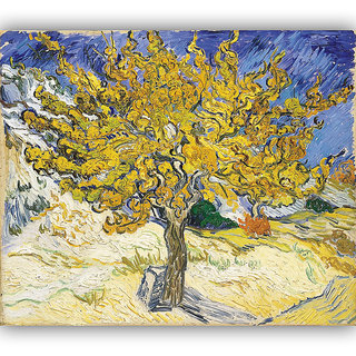 Vitalwalls Landscape Painting Canvas Art Printon Wooden Frame.Scenery-392-F-60cm