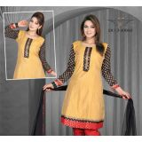 Designer Ready To Wear Stitched Kurti Top Kr66