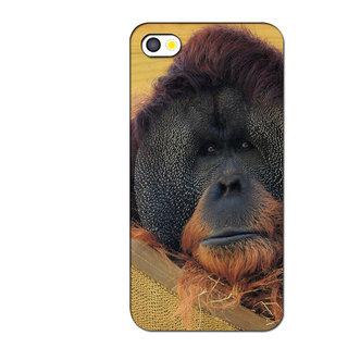 Instyler Premium Digital Printed 3D Back Cover For Apple I Phone 5S 3DIP5SDS-10073