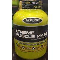Big Muscle Xtrme Muscle Mass 6Lbs Chocolate