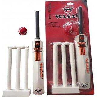 Wasan Kiddy Set Cricket Kit