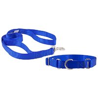 Pawzone  Blue  Leash With Collar Set For Dogs Large