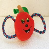 Cat-Dog Toys with rope (Imported)