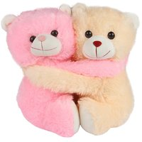 Cute Beige  Pink Cuddling Couple Teddy Bear