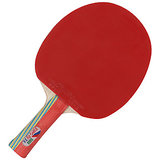 GKI Kung-Fu Dx Table Tennis Racket