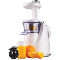 Glen GL-4016 Slow Juicer