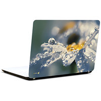 Pics And You Dew Drops 3M/Avery Vinyl Laptop Skin Decal-AB040
