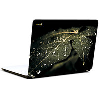 Pics And You Dew Drops On Leaf 3M/Avery Vinyl Laptop Skin Decal-AB084