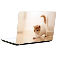 Pics And You Cute Kitty 3M/Avery Vinyl Laptop Skin Decal-AN045