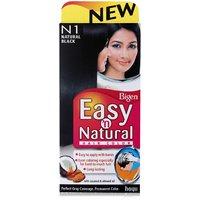 Bigen Easy 'n Natural Hair Color - N1 Natural Black Colour