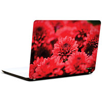 Pics And You Burst Of Beauty 3M/Avery Vinyl Laptop Skin Sticker Decal - FL076