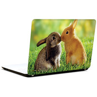Pics And You Bunny In Love 3M/Avery Vinyl Laptop Skin Sticker Decal-LV055