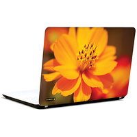 Pics And You Orange Glory 3M/Avery Vinyl Laptop Skin Sticker Decal - FL012