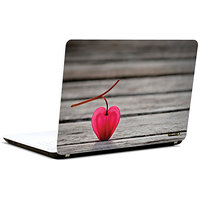 Pics And You Heart Shape Fruit 3M/Avery Vinyl Laptop Skin Sticker Decal-LV074