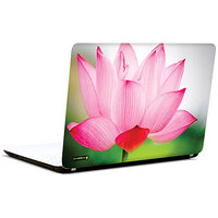 Pics And You Kissed With Bliss 3M/Avery Vinyl Laptop Skin Sticker Decal - FL057
