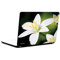 Pics And You Isle Of White 3M/Avery Vinyl Laptop Skin Sticker Decal - FL059
