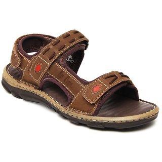 Lee Cooper Men's Brown Formal Shoes (Option 6)