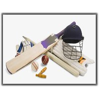 TIA Creation Cricket Equipment Kit 0260 Poster on Matte Photographic Paper 16inch X 12inch