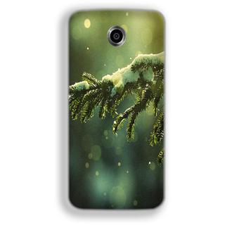 Mott2 Back Cover For Google Nexus 6 Nexus-6-Hs05 (142) -22087