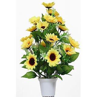 24 Mini Sunflower Pot
