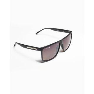 Danny Daze Wayfarer D-1504-C4 Sunglasses