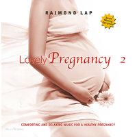 Music 4 Babies Lovely Pregnancy CD 2