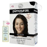 Purnaturals Soft Black 100 Natural Hair Colour 10104 Kit