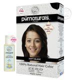 Purnaturals Soft Black 100 Natural Hair Colour 10104 Kit