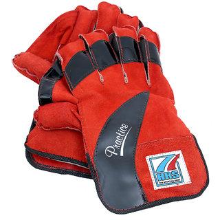 Practice Wicket Keeping Gloves