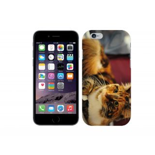 WOW Printed Back Cover Case for Apple iPhone 6