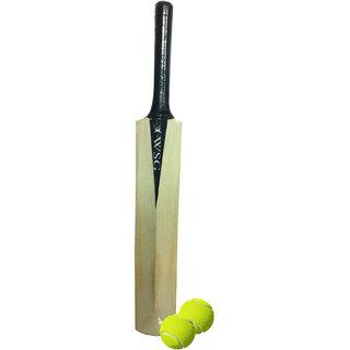 Cricket Bat with 2 Balls