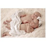 Two Cute Babies Poster