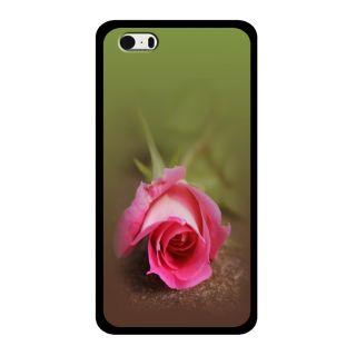 Slr Back Case For Apple Iphone 5  SLRIP52D0865
