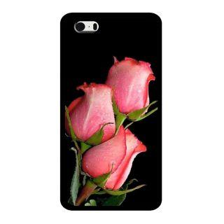 Slr Back Case For Apple Iphone 5S  SLRIP5S2D0497