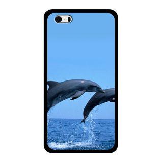 Slr Back Case For Apple Iphone 5S  SLRIP5S2D0643