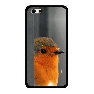 Slr Back Case For Apple Iphone 5S  SLRIP5S2D0592