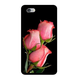 Slr Back Case For Apple Iphone 6 SLRIP62D0497