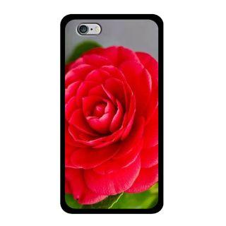 Slr Back Case For Apple Iphone 6S SLRIP6S2D0423