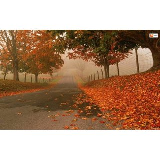 999Store Vinyl Unframed Plastic Autumn Red Leaves Wall Design Paper like wall sticker painting Home Decor