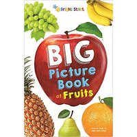 Big Picture Book of Fruits Paperback  Jun 2015