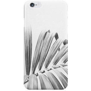 Dreambolic Palm I Phone 6 Plus Mobile Cover