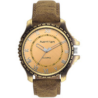 Arzent Fiarti Iconic Series Stylish Case Analog Multi-Color Dial Watch For Mens AF1012